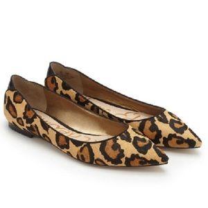 Sam Edelman Leopard Pointed Flats